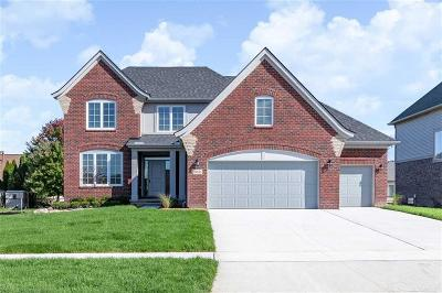 Macomb Twp Single Family Home For Sale: 49646 Bingham Lane