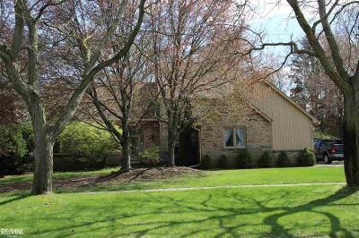 Shelby Twp Single Family Home For Sale: 11630 Hiawatha