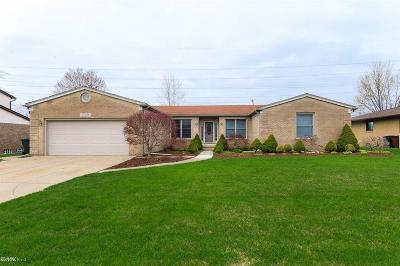 Shelby Twp Single Family Home For Sale: 46705 Gulliver
