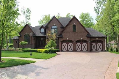 Harrison Twp Single Family Home For Sale: 37800 Trillium Place