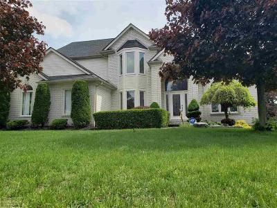 Shelby Twp Single Family Home For Sale: 13948 Quill