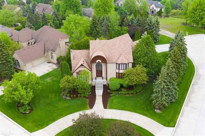 Rochester Hills Single Family Home For Sale: 2930 Eagle Dr.