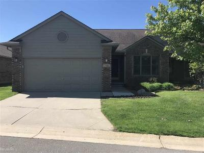Sterling Heights Condo/Townhouse For Sale: 3482 Davidoff