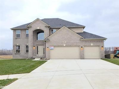 Macomb Twp Single Family Home For Sale: 49519 Galino Court