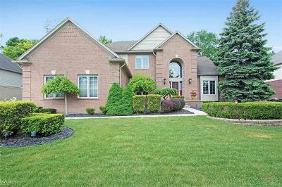 Shelby Twp Single Family Home For Sale: 50913 Otter Creek Dr
