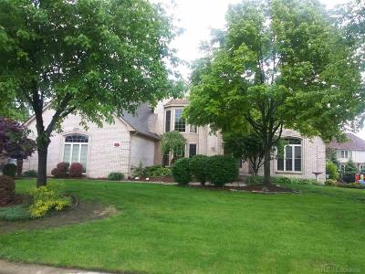 Shelby Twp Single Family Home For Sale: 53960 Sutherland Lane