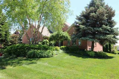Rochester Hills Single Family Home For Sale: 1135 Brunswick