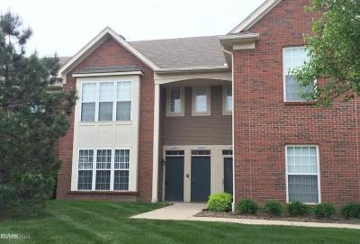 Chesterfield Twp Condo/Townhouse For Sale: 51848 Adler Park Dr E