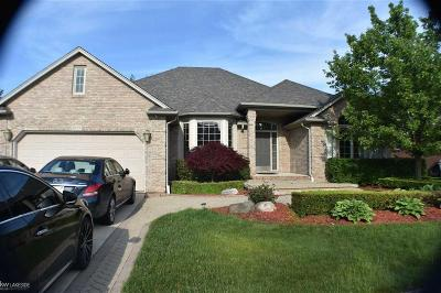 Macomb Twp Single Family Home For Sale: 49196 Kilkenny Dr