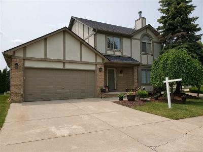 MACOMB Single Family Home For Sale: 21802 Wilshire Circle