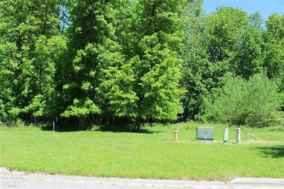 Grand Blanc Residential Lots & Land For Sale: 10290 Edgewood Dr