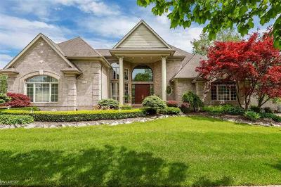 Shelby Twp Single Family Home For Sale: 54144 Birchfield