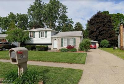 Macomb County Single Family Home For Sale: 41122 Harvard