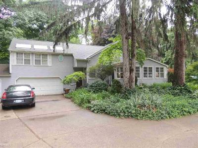 Clinton Twp Single Family Home For Sale: 38150 Woodcrest