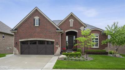 Washington Twp Condo/Townhouse For Sale: 58976 Valley View