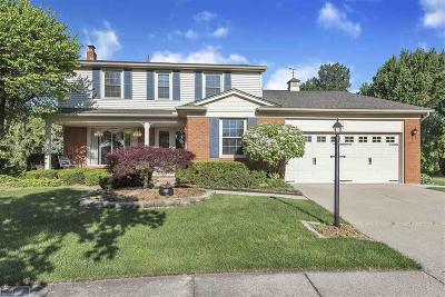 Clinton Twp Single Family Home For Sale: 44421 Thunder Bay Dr.