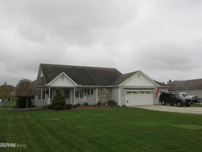 Chesterfield Twp Single Family Home For Sale: 52241 Sass
