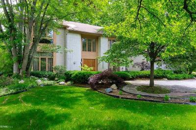 Farmington Hills Single Family Home For Sale: 30439 Fox Club Dr