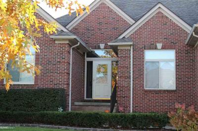 Clinton Twp Single Family Home For Sale: 17542 Goldeneye