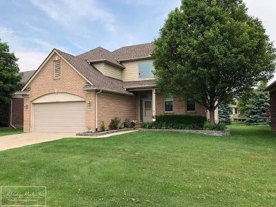 Macomb Twp Single Family Home For Sale: 49802 Cranberry Creek