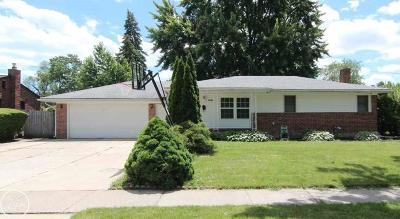 Clinton Twp, Harrison Twp, Roseville, St. Clair Shores Single Family Home For Sale: 22938 Dale Allen