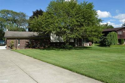 Shelby Twp Single Family Home For Sale: 55280 Ester