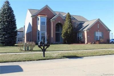 Macomb Twp Single Family Home For Sale: 48883 Rattle Run