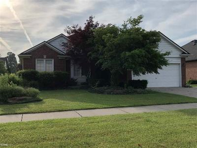 Macomb Twp Single Family Home For Sale: 51798 Woodside Dr