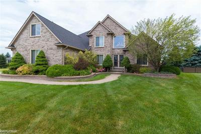 Macomb Twp Single Family Home For Sale: 48093 Kings Ct.