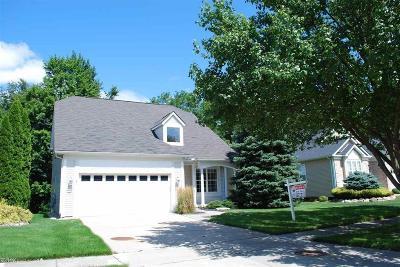 Auburn Hills Condo/Townhouse For Sale: 4010 Hillsdale