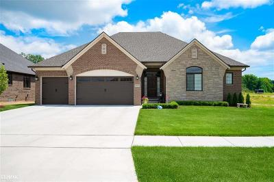 Macomb Twp Single Family Home For Sale: 49980 N Colony Ct