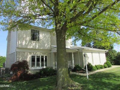 Macomb Twp Condo/Townhouse For Sale: 46636 E Oakwood