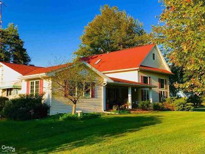 Saint Clair County, St. Clair County Single Family Home For Sale: 6024 Meisner