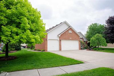 Macomb Twp Single Family Home For Sale: 48480 American Elm