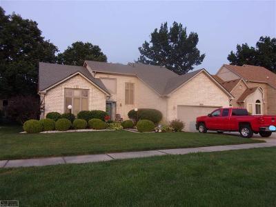 Macomb Twp Single Family Home For Sale: 49734 Shenandoah Dr