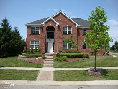 Novi Single Family Home For Sale: 41710 Steinbeck