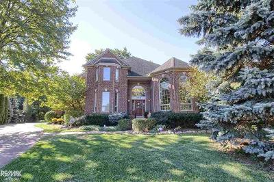 Harrison Twp MI Single Family Home For Sale: $605,000