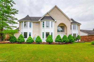 Sterling Heights Single Family Home For Sale: 42644 Pond View Dr