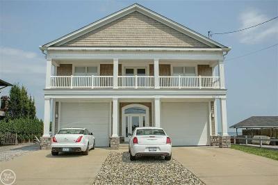 Harrison Twp MI Single Family Home For Sale: $999,900