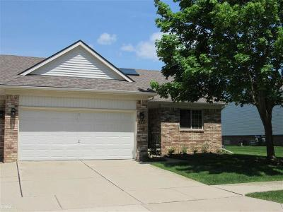 Macomb Twp Condo/Townhouse For Sale: 17147 Mayfield