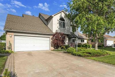 Harrison Twp MI Single Family Home For Sale: $519,000
