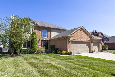 Macomb Twp Single Family Home For Sale: 18595 London