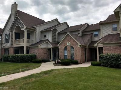 South Lyon Condo/Townhouse For Sale: 229 Brookwood #9 #9