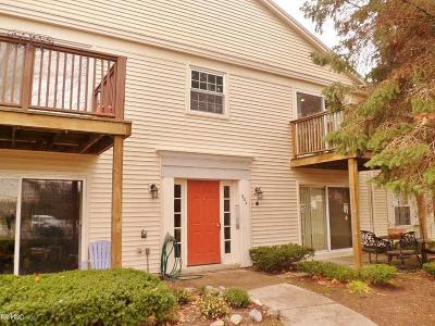 Auburn Hills Condo/Townhouse For Sale: 904 Chestnut Hill #Apt. F