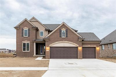 Macomb Twp Single Family Home For Sale: 18058 Player Drive