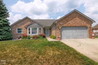 Macomb Twp Single Family Home For Sale: 53449 Abraham Dr.