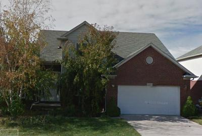 Macomb Twp Single Family Home For Sale: 48159 Feral