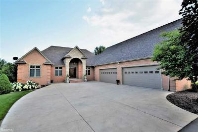 Bruce Twp Single Family Home For Sale: 7260 34 Mile Road