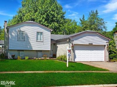 Fraser Single Family Home For Sale: 31665 Cindy