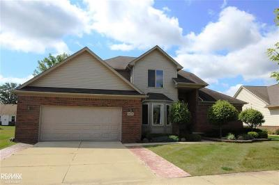 Macomb Twp Single Family Home For Sale: 18466 Country Club